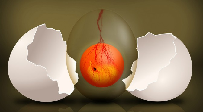 Picture of an egg in Evolution, life, analysis
