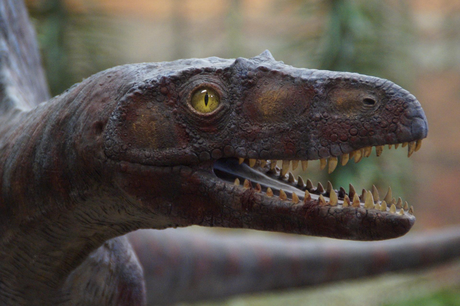 A kind of dinosaur | Eine Art Dinosaurier